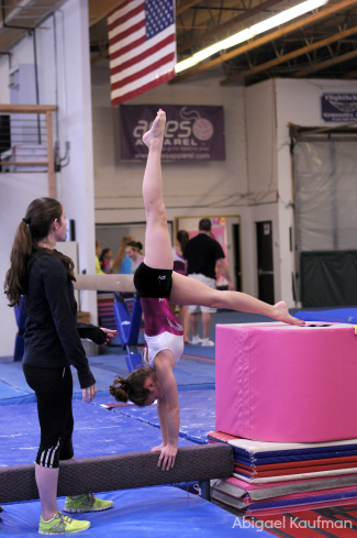 Pike_handstand_one_leg2