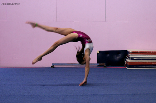rethinking gymnastics complexes