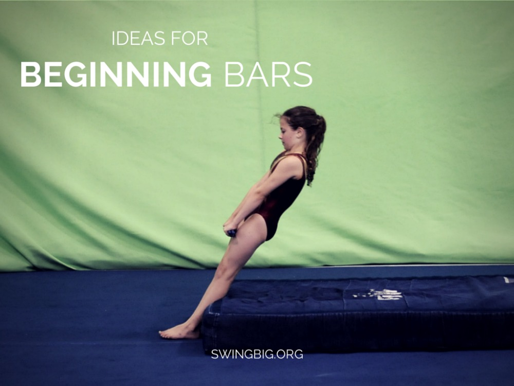 Recreational and Beginning Bars Ideas