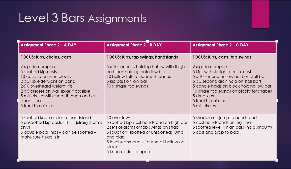 Level 3 Bars Assignments